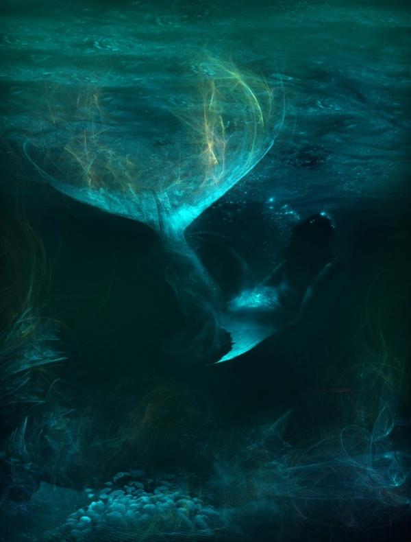 Mermaid Tail | ledajewelco