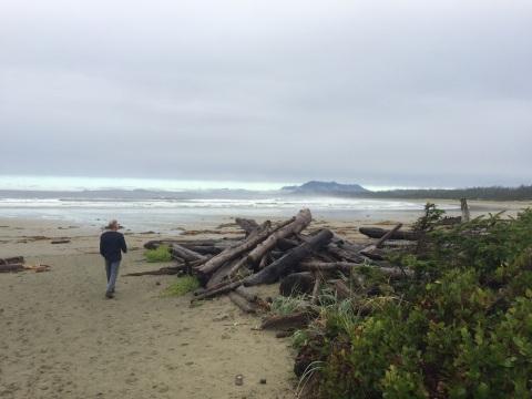 Beach With Driftwood & The Ball&Chain
