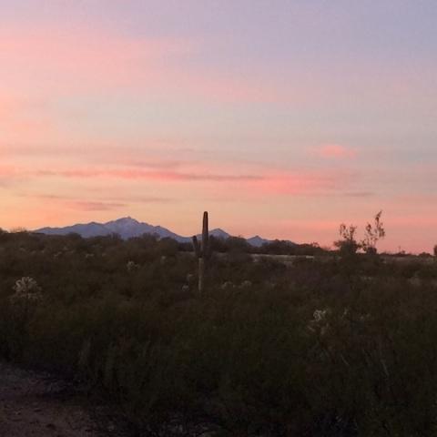 TucsonSunrise 2016